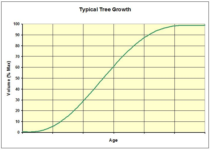 CHART_Typical Tree Growth_Volume