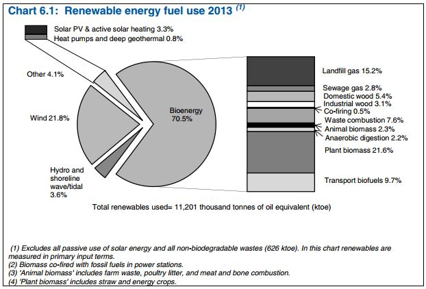PIE_DECC Dukes Renewables 2013